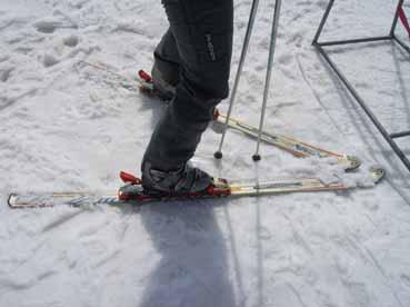 宝台樹スキー板.jpg