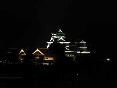 熊本城ライトアップ.jpg
